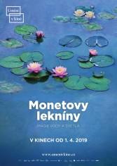 Monetove lekná – mágia vody a svetla